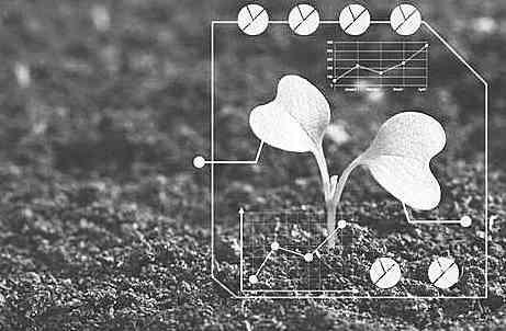 人工智能将在农业领域发挥优势