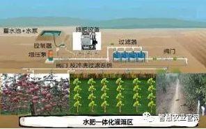 果树种植中的水肥一体化技术
