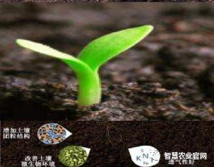 智慧农业:农业生产中的智能土壤养分速测仪