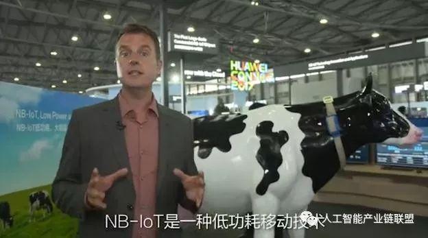牛联网?奶牛心情不好,通过人工智能就能知道!
