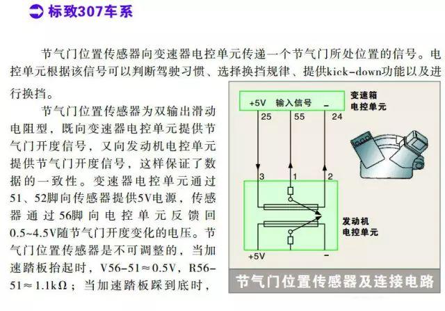标志307系列节气门位置传感器检测数据