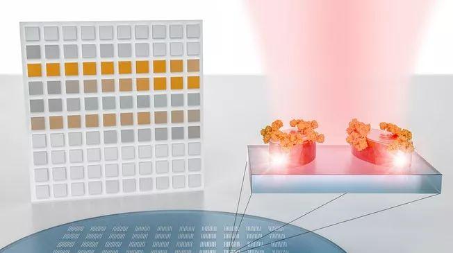 一种可以将分子指纹转换成条形码的纳米技术传感器