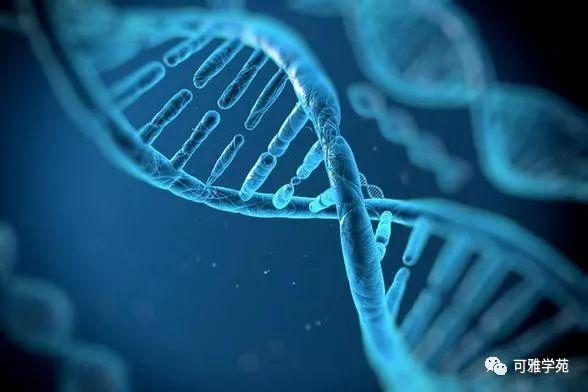 可雅学苑项目之: 分子生物传感器设计