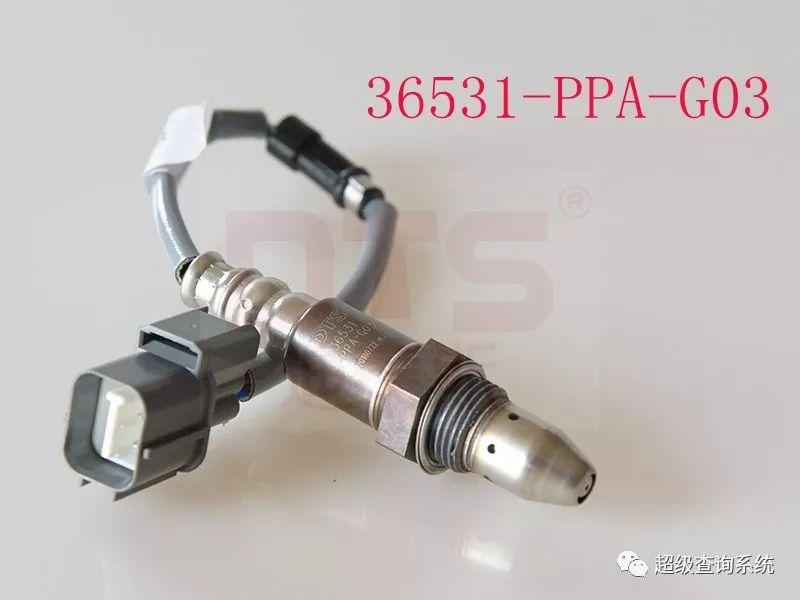 36531-PPA-G03