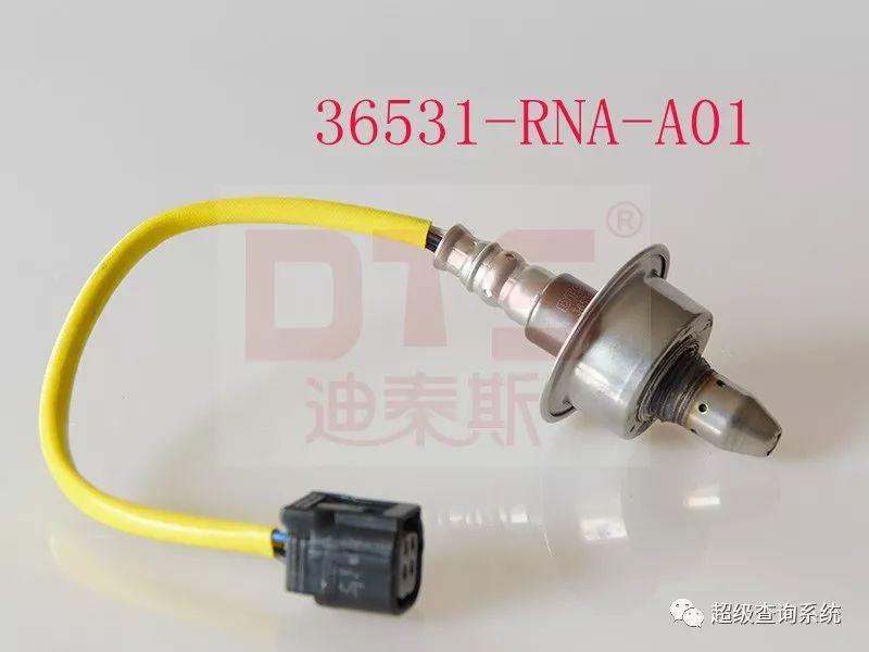 36531-RNA-A01