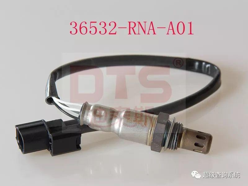 36532-RNA-A01