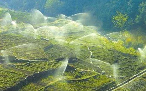 智慧农业告诉你,未来谁来种