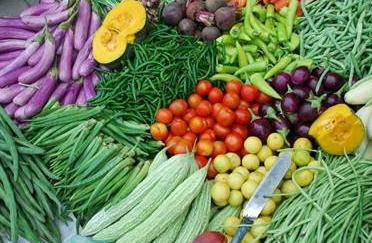 关于运用物联网技术加快构建食用农产品可追溯体系的提案