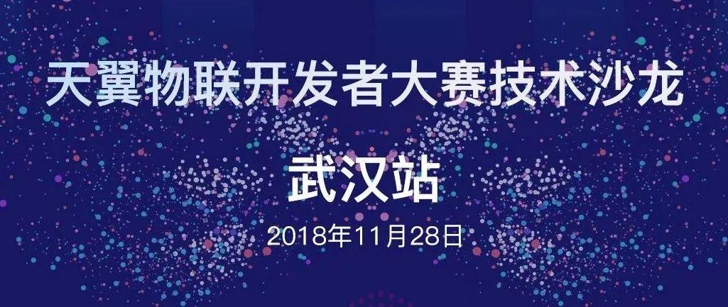 中国电信IoT技术沙龙空降武汉