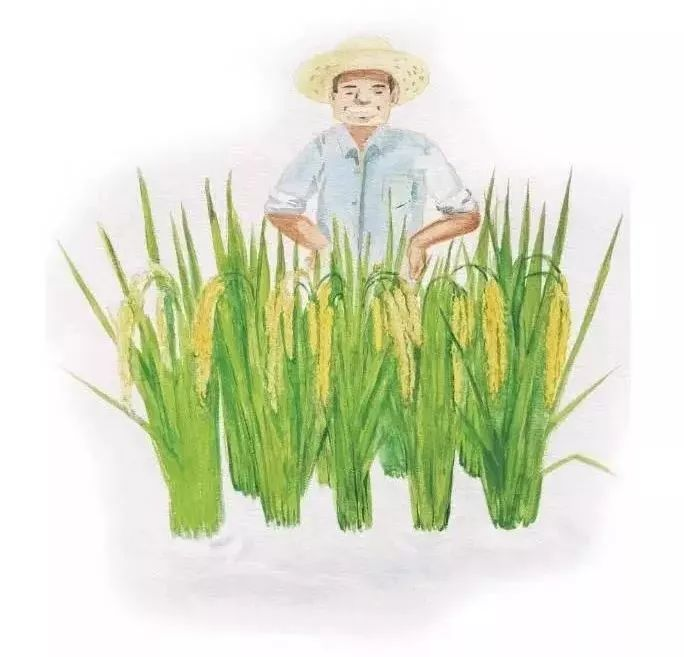 如何通过物联网方案打造智慧农业