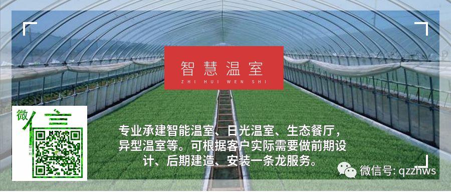 智能玻璃温室新型的农业景观形态是怎样的?