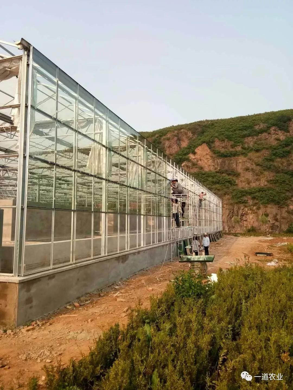 葫芦岛兴城市玻璃智慧温室大棚建造案例分享