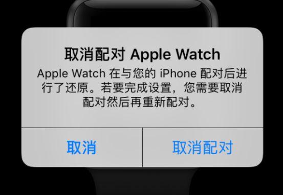 苹果手表为什么重新配对不了