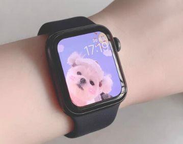 apple watch series6怎么看海拔
